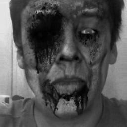 zombified_wb20130620013422176463