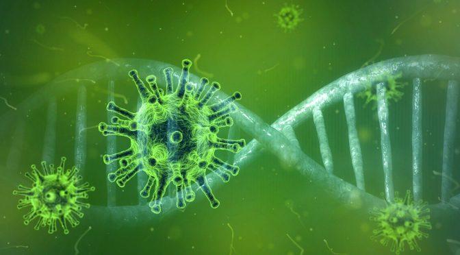 L'épidémie du Coronavirus